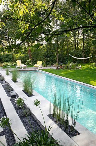 Luxury pool and backyard landscaping